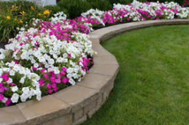 flower bed design cape coral