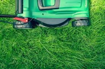 mowing grass with a push mower florida